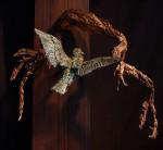 Nesting-Kingfisher-01